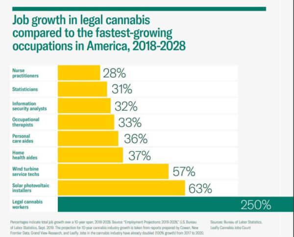 Cannabis job growth US